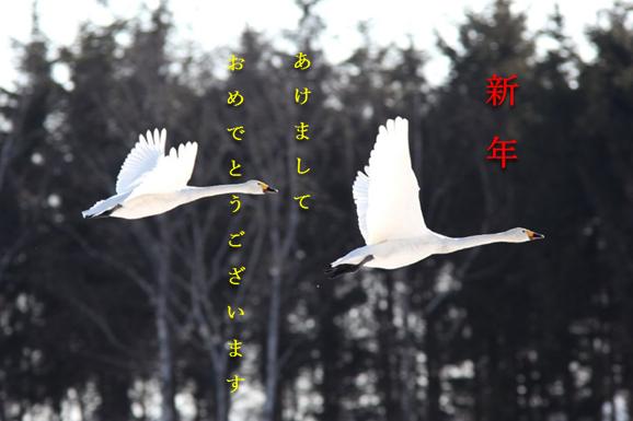 新年あけましておめでとうございますと書かれた鶴が2羽飛んでいる写真