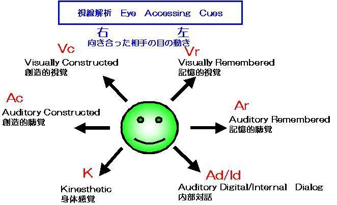 表象システムによる相手の目の動きの解析図