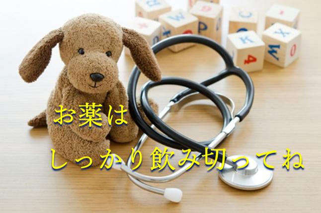 机の上に置かれた茶色の可愛い犬のぬいぐるみと黒い聴診器と英語の積み木の写真