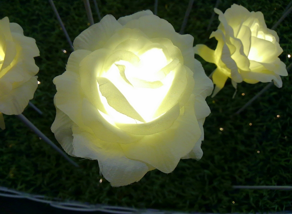 f:id:flower-and-travel:20160812230212j:plain