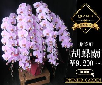 f:id:flower-flower-flower:20160503174140j:plain