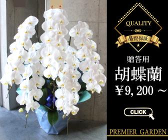 f:id:flower-flower-flower:20160512184657j:plain
