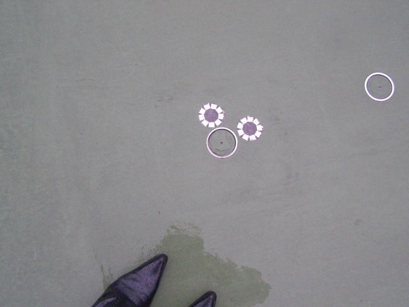 f:id:flower-sea:20091006170127j:image