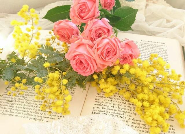 f:id:flower7pollen:20180209233649j:image