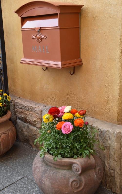 f:id:flowerTDR:20170319220326j:plain