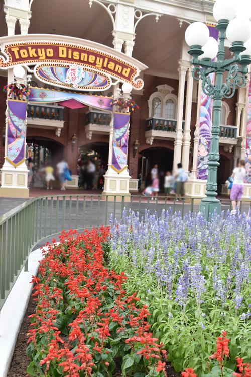 f:id:flowerTDR:20170805225039j:plain