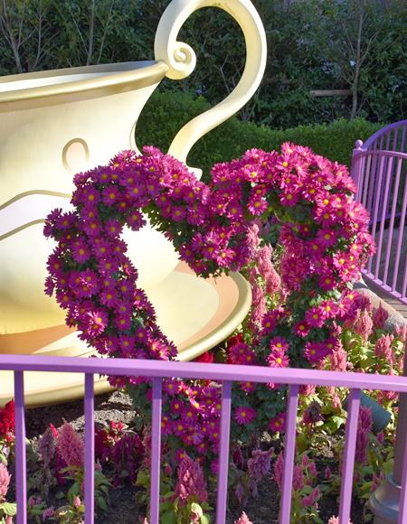 f:id:flowerTDR:20171115083002j:plain