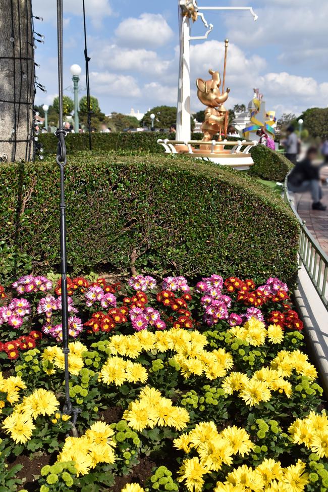 f:id:flowerTDR:20181020085940j:plain