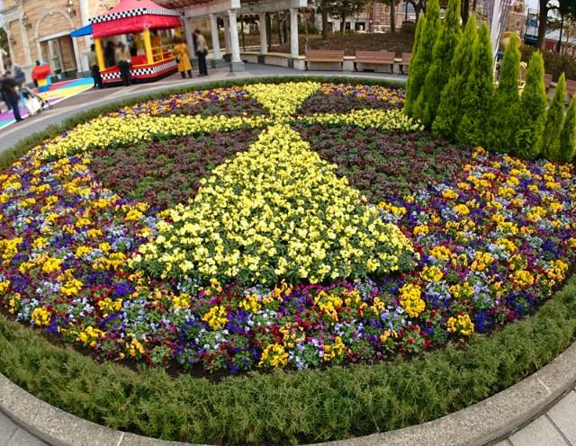 f:id:flowerTDR:20190127084218j:image