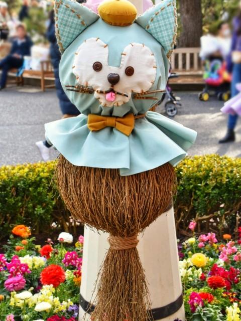 f:id:flowerTDR:20190128090341j:image