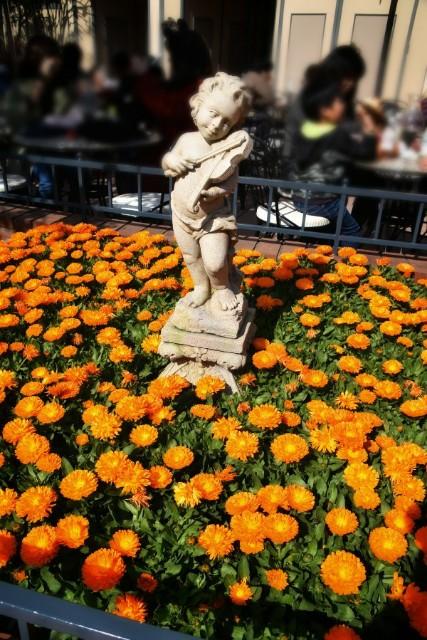 f:id:flowerTDR:20190322085708j:image