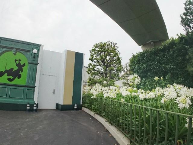 f:id:flowerTDR:20190707094227j:image