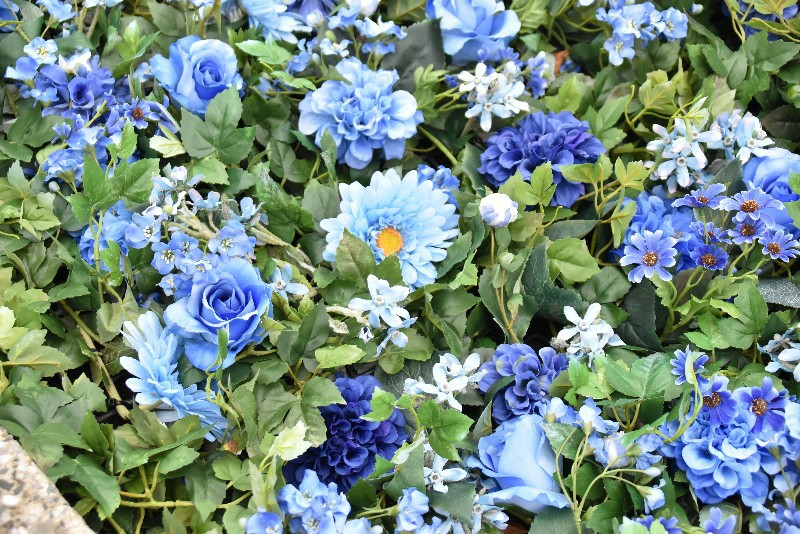 f:id:flowerTDR:20200313121437j:image