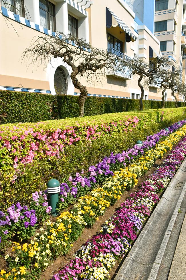 f:id:flowerTDR:20200409235027j:plain