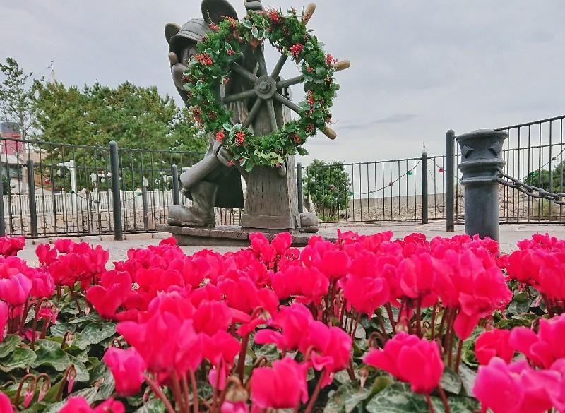 f:id:flowerTDR:20201124090026j:image