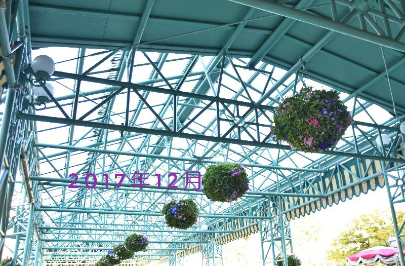 f:id:flowerTDR:20201203092432j:image