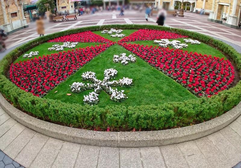 f:id:flowerTDR:20201206103602j:image