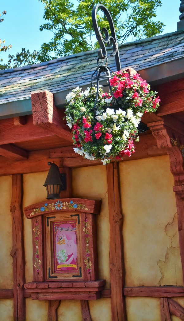 f:id:flowerTDR:20210331083511j:image
