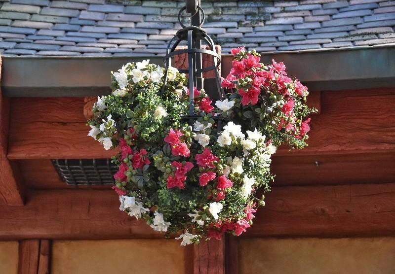 f:id:flowerTDR:20210331083519j:image