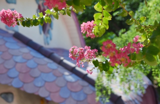 f:id:flowerTDR:20210816092219j:image