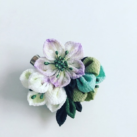 f:id:flowerflakes:20170227120658j:plain
