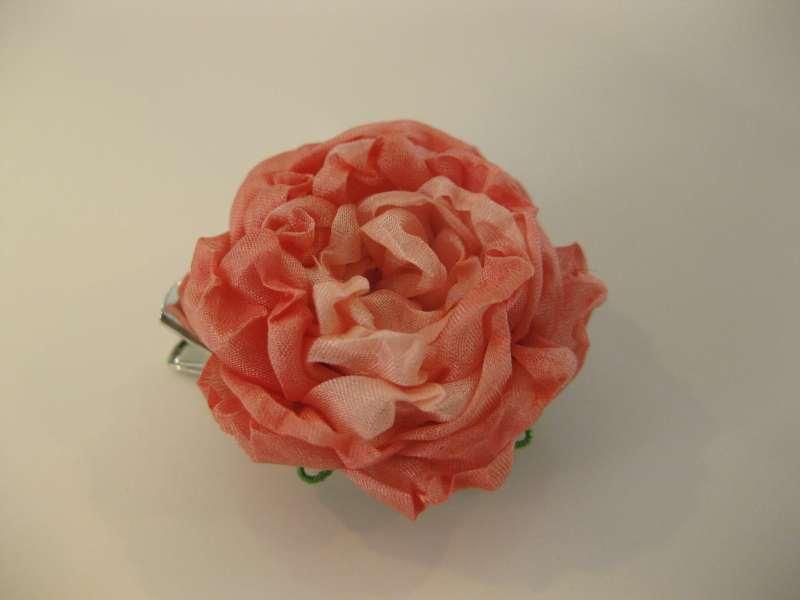 f:id:flowerflakes:20170316102732j:plain
