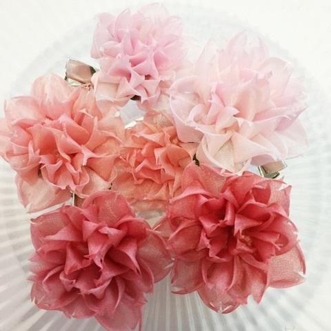 f:id:flowerflakes:20170317092253j:plain