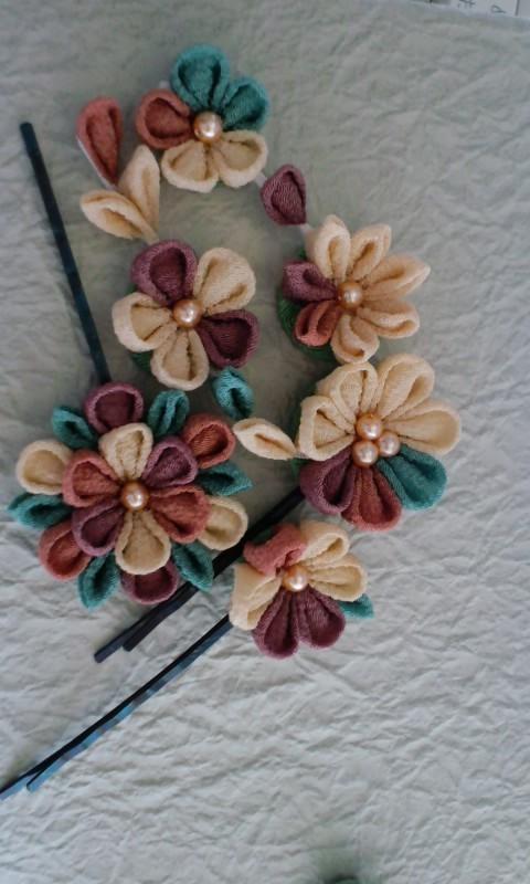 f:id:flowerflakes:20170317094817j:plain