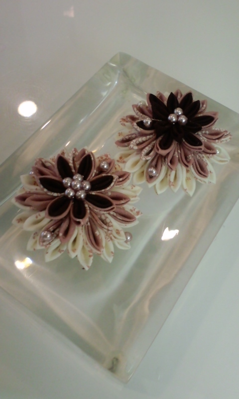 f:id:flowerflakes:20170317095040j:plain