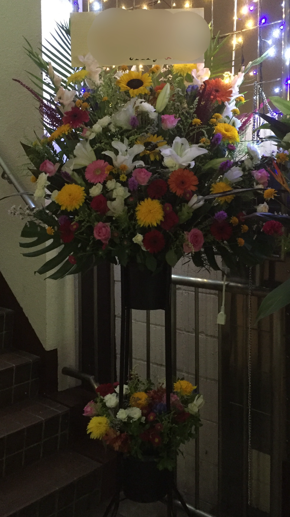 f:id:flowerpot0923:20160804234229p:image