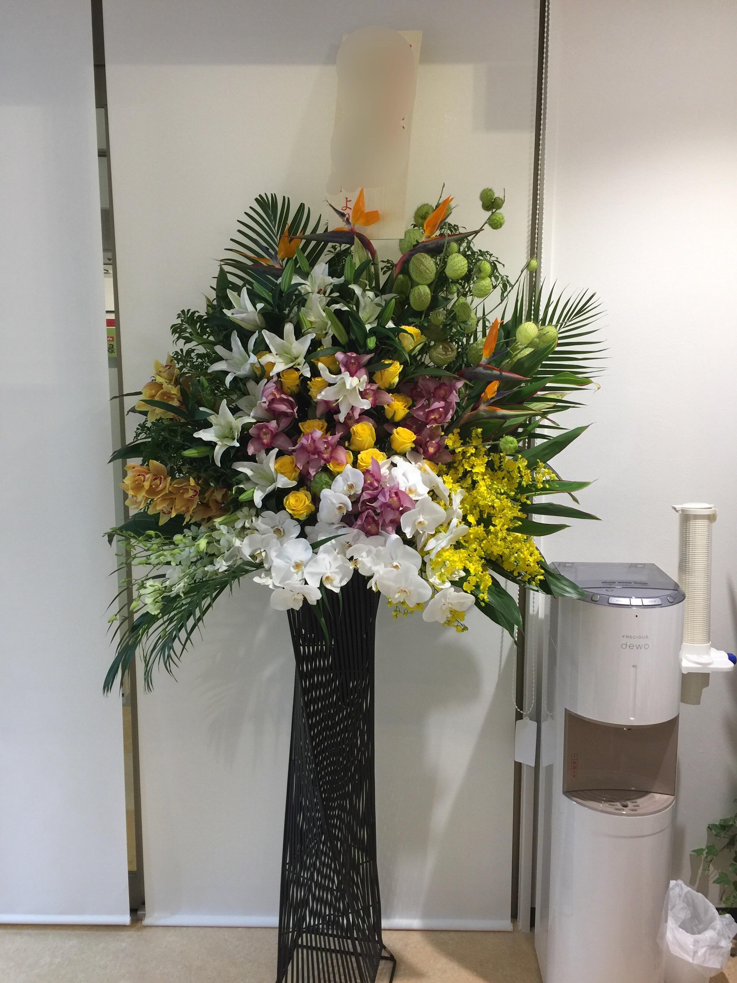 f:id:flowerpot0923:20161108212038j:image