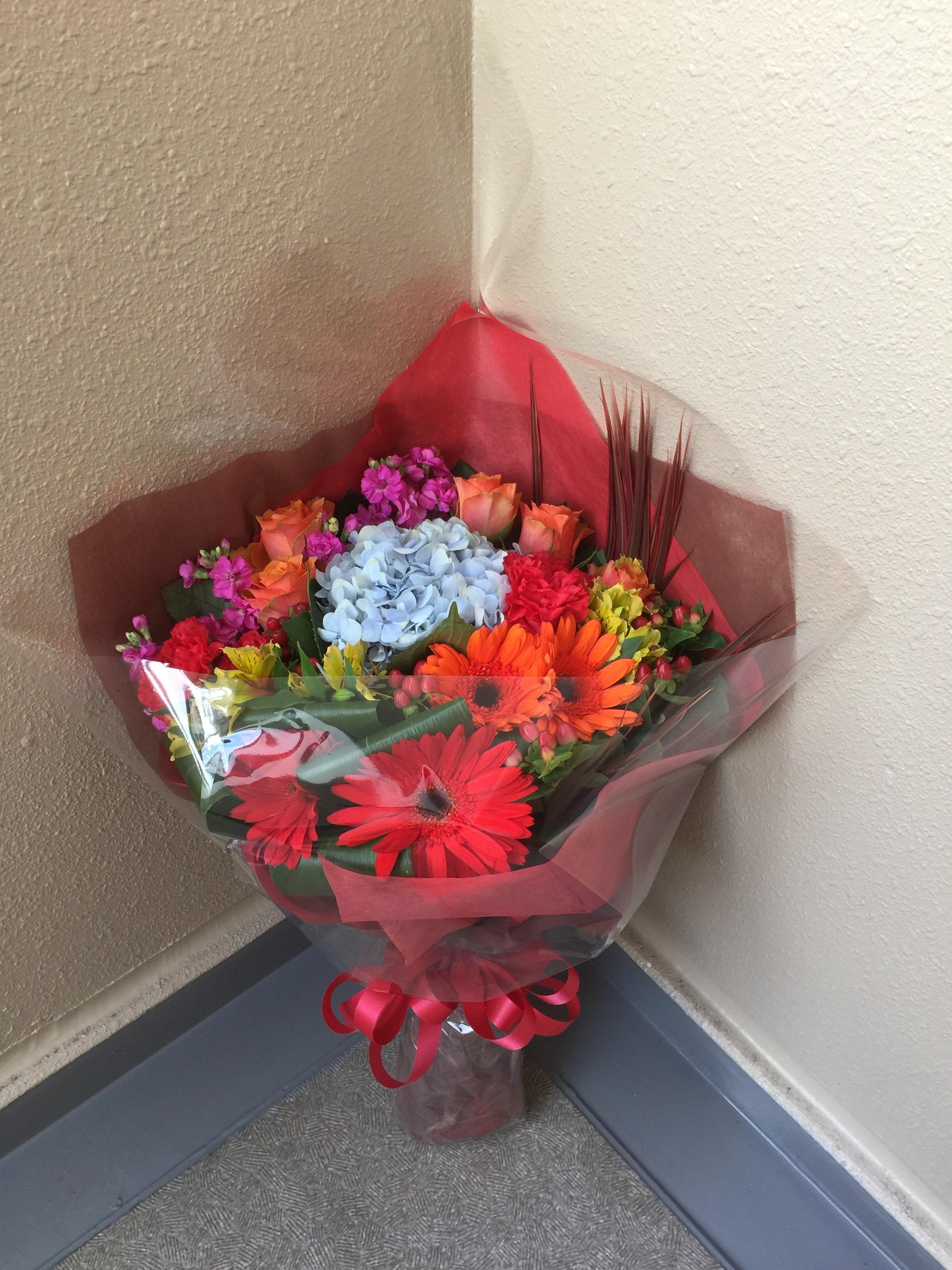 f:id:flowerpot0923:20170115205039j:image
