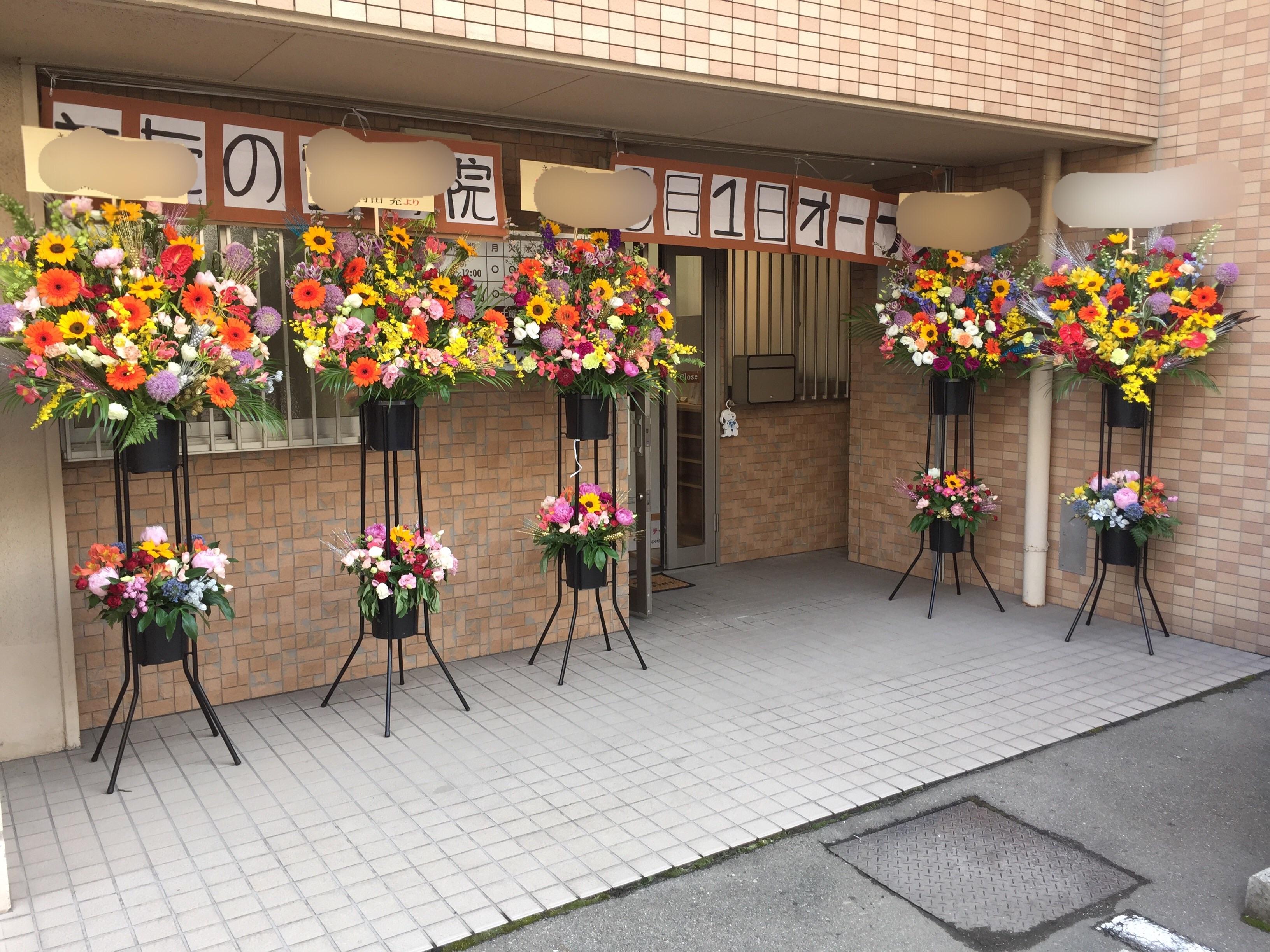 f:id:flowerpot0923:20170607061217j:image