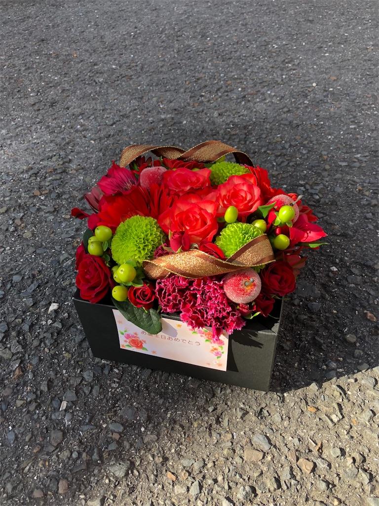 f:id:flowerpot0923:20180126062246j:image