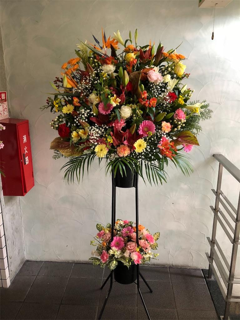 f:id:flowerpot0923:20180129083945j:image