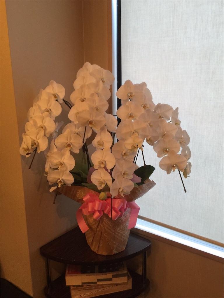 f:id:flowerpot0923:20180129085234j:image