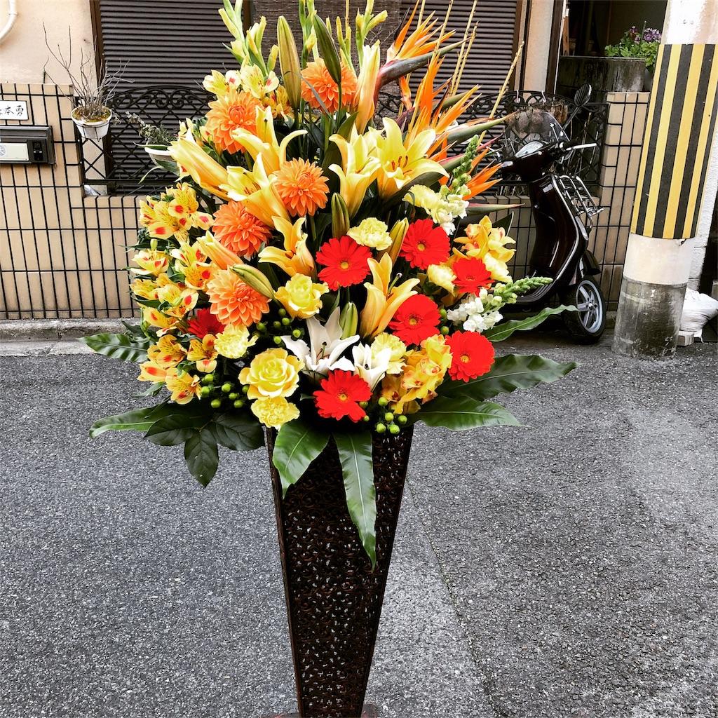 f:id:flowerpot0923:20180220175427j:image