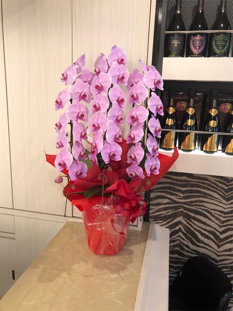 f:id:flowerpot0923:20181210205401j:image