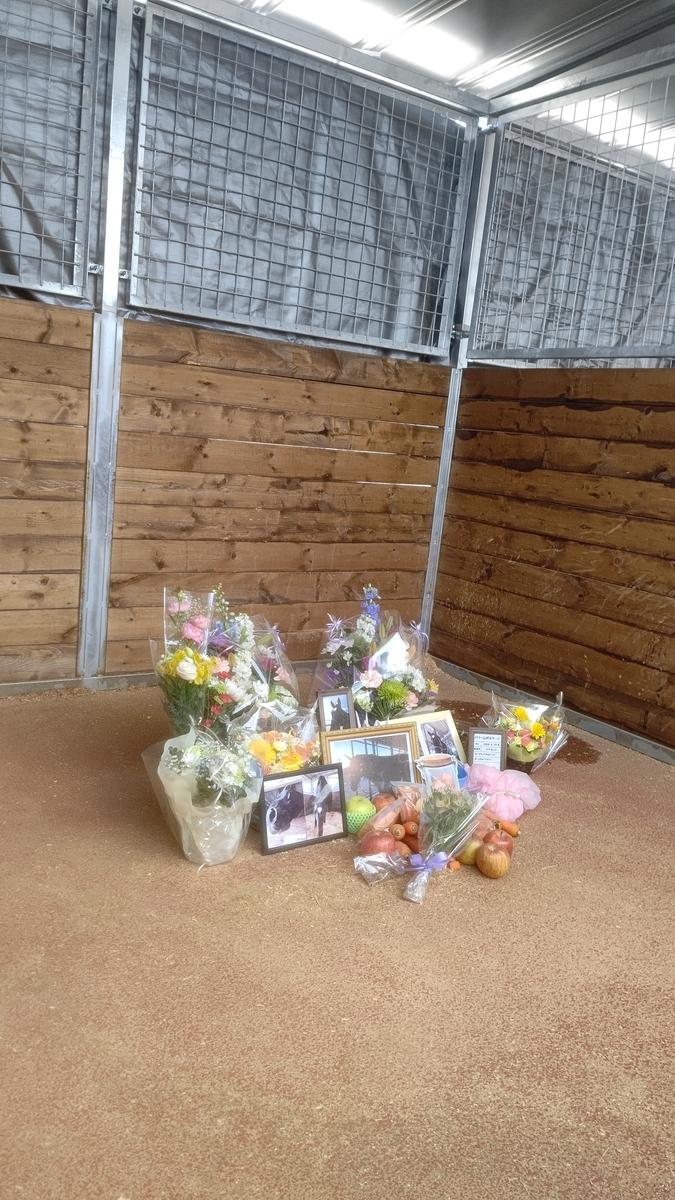 f:id:flowers-in-the-dustbin:20210415183157j:plain
