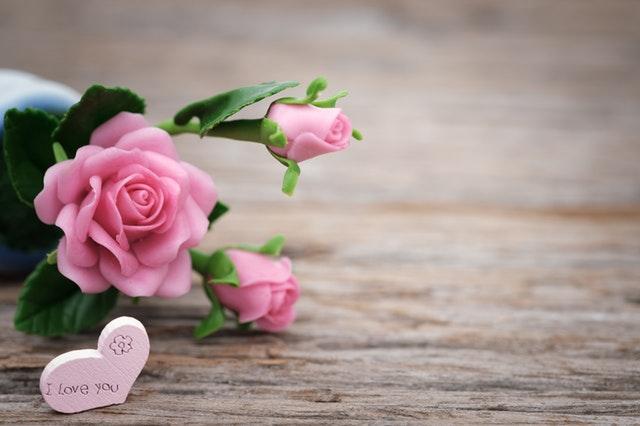 f:id:flowersugars:20180914164126j:plain