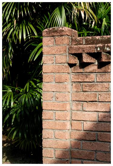 煉瓦の壁とシュロ竹