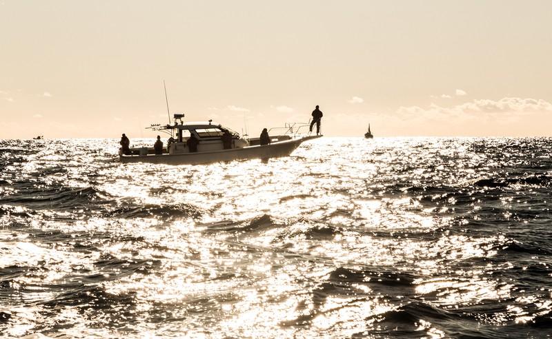 海釣りの画像