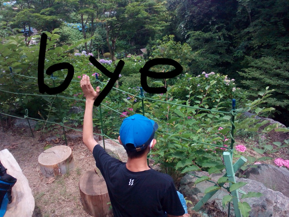 f:id:fly131taro:20200627154101j:plain