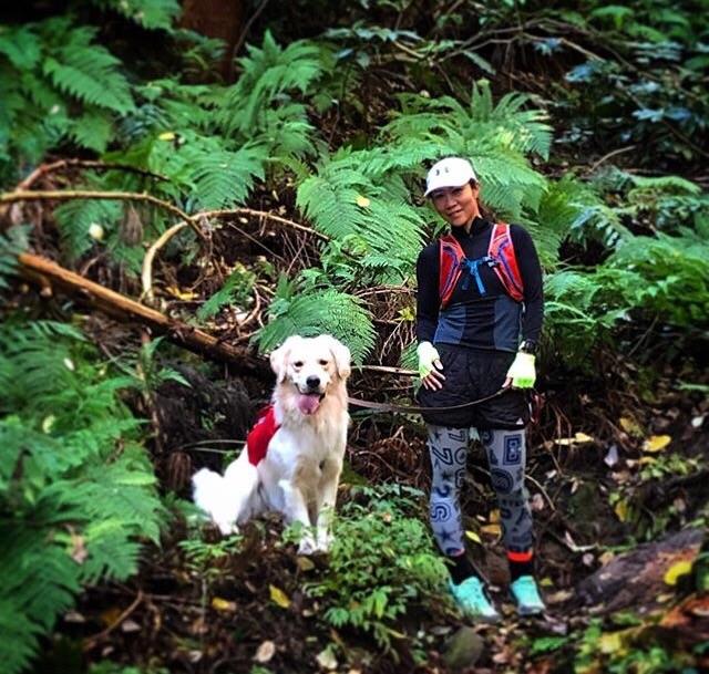 三浦アルプスを歩く女性と犬
