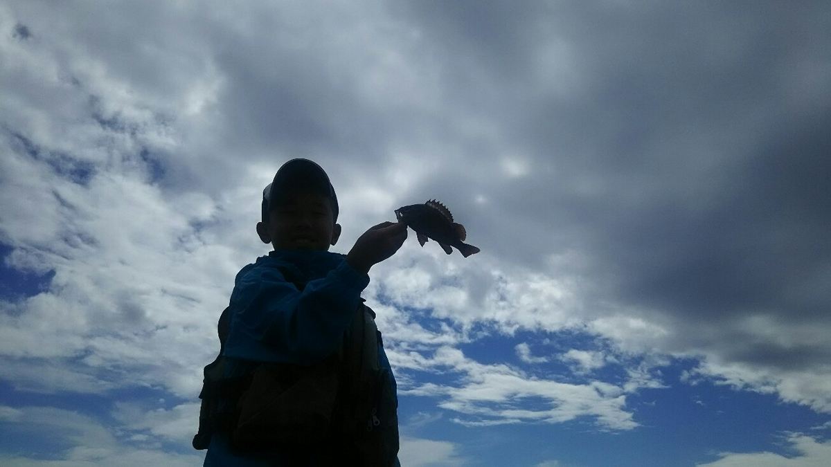 f:id:flyfisher417:20190720220155j:plain