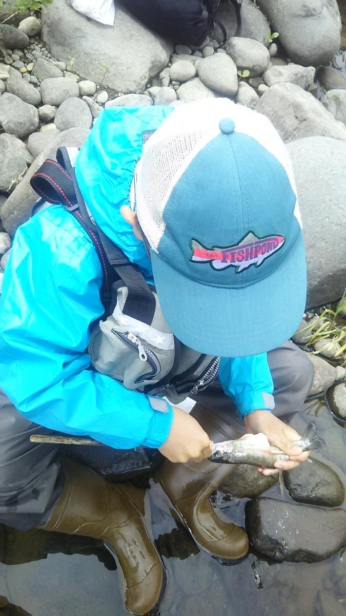 f:id:flyfisher417:20200608124953j:plain