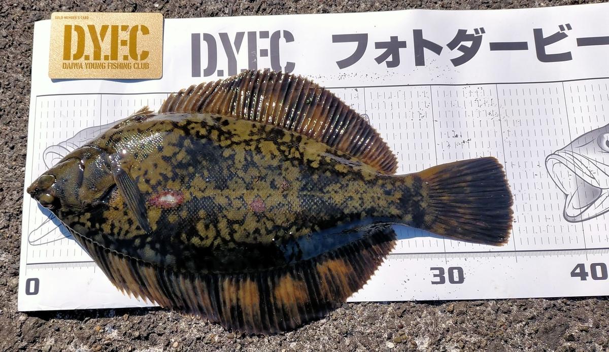 f:id:flyfisher417:20210412125950j:plain