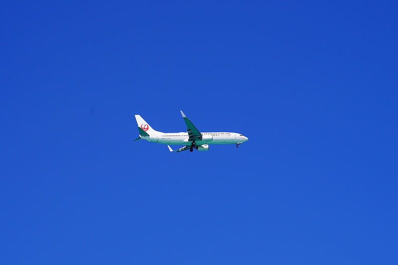 f:id:flyfromrjgg:20201026170744j:plain