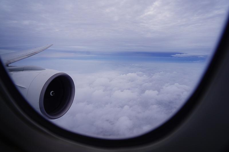 f:id:flyfromrjgg:20210710002501j:plain