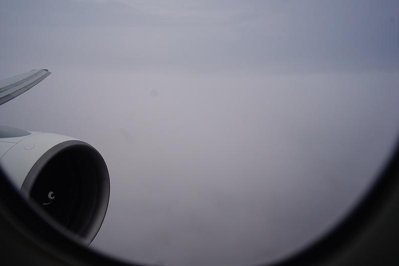 f:id:flyfromrjgg:20210710002505j:plain